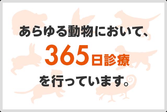 あらゆる動物において、365日診療を行っています。